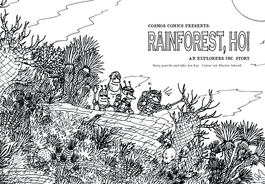 Rainforest, Ho! 3